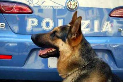 polizia antidroga