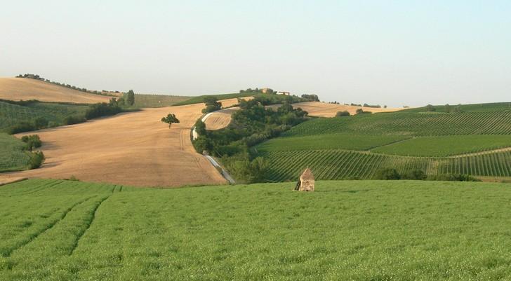 Turismo nelle Marche