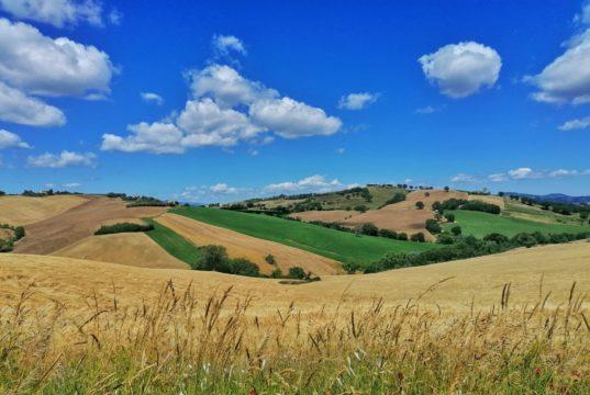 3a edizione della Borsa del turismo del centro Italia a Treia